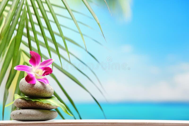 栈禅宗在海滩附近扔石头 免版税图库摄影
