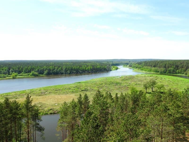 树、小海岛和河Nemunas,立陶宛 免版税库存照片