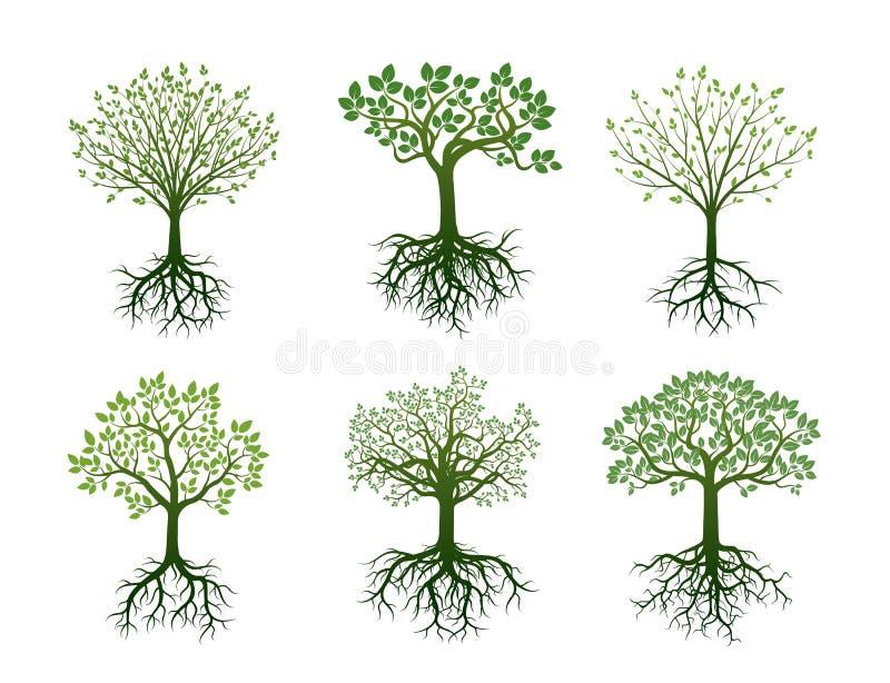 树根和叶子形状也corel凹道例证向量图片
