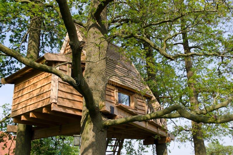 树上小屋作为假日家 免版税库存图片