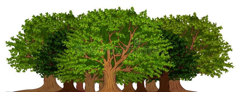 树丛结构树 皇族释放例证