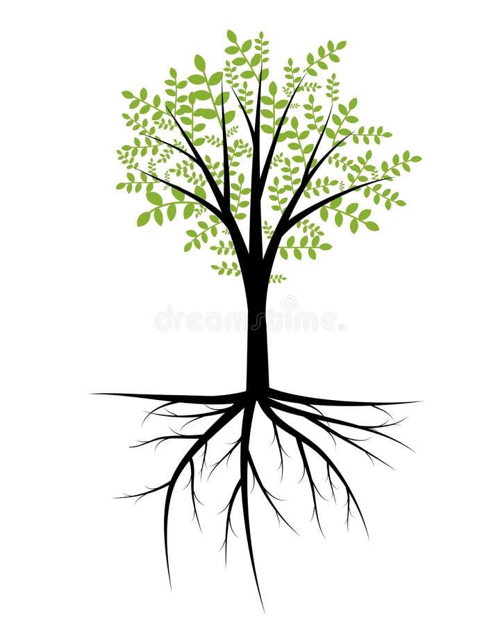 树例证 皇族释放例证