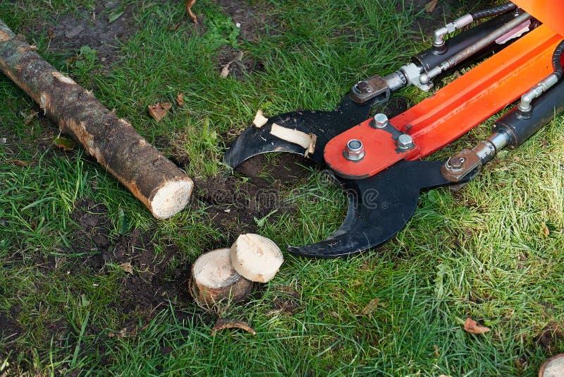 树切割机工具的细节 库存图片