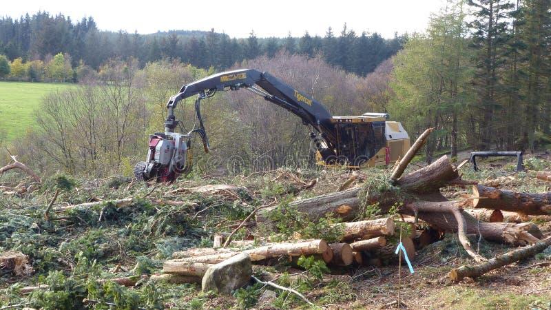 树切割机 库存照片