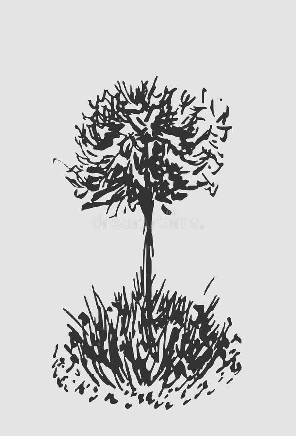 树剪影 葡萄酒例证,被刻记的样式 手拉的墨水 后面在白色背景隔绝的线描 对风景 皇族释放例证