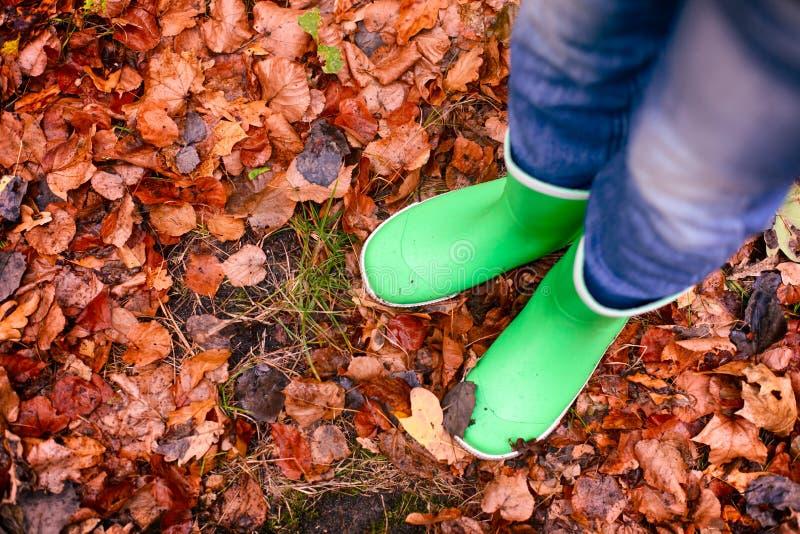 树叶上站着绿色橡皮靴的孩子 库存图片