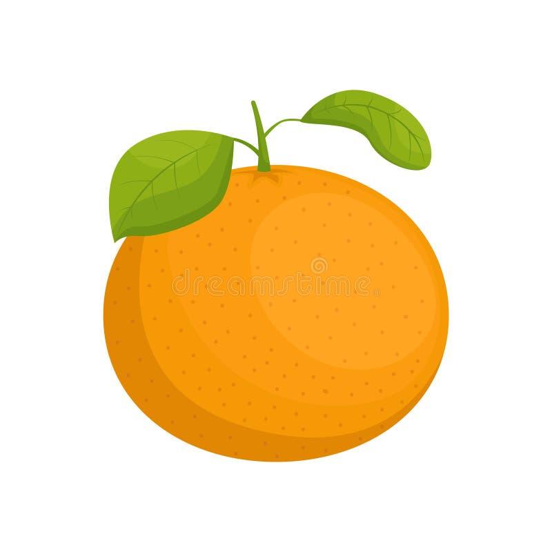 树叶普通话 新年菜 分离的柑橘 矢量插图 皇族释放例证