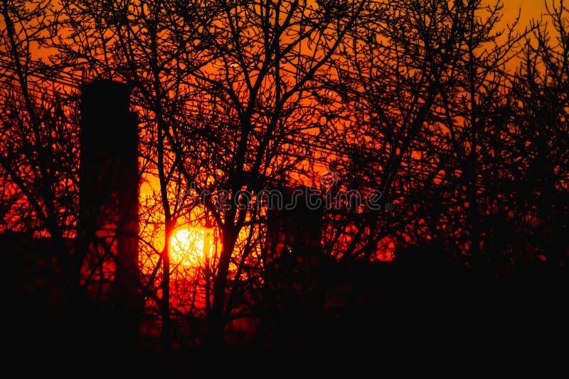 树和在红色天空背景的黑导线黑剪影没有叶子和大厦的与橙色和黄色日落太阳 免版税库存图片