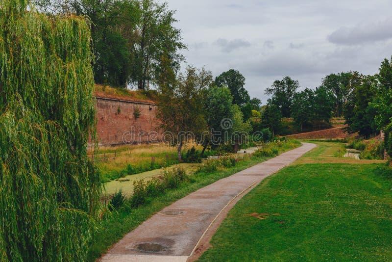 树和城堡墙壁之间的道路,在里尔附近城堡,法国 库存照片
