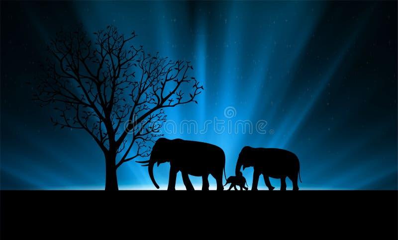 树和大象家庭剪影在抽象光滑的光的 库存例证