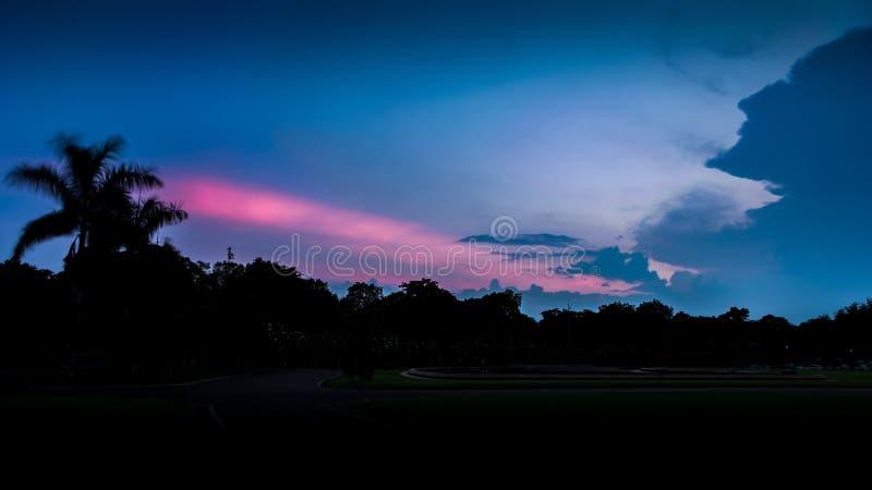 树和背景天空在成为或日出高端,hdr如何日落一个剪影室内设计师图片