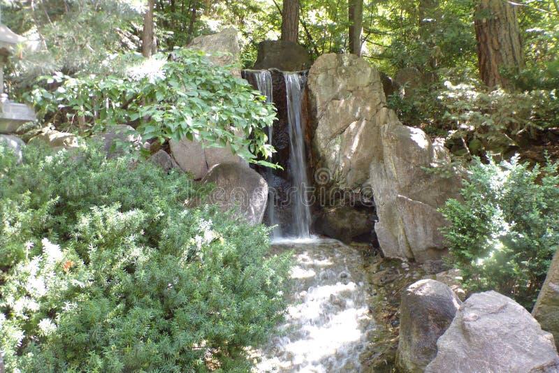 树和灌木几乎掩藏的美丽的小瀑布 免版税图库摄影
