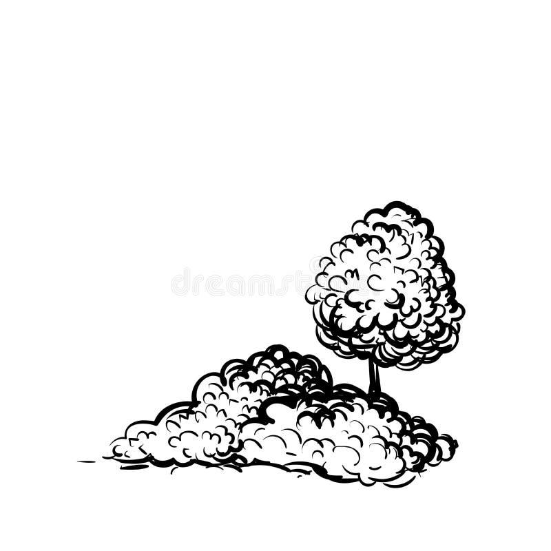 树和灌木在白色背景手拉的剪影称呼例证 种植黑白传染媒介 皇族释放例证