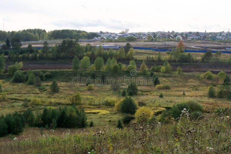 树和灌木在绿色原野的边缘 库存照片