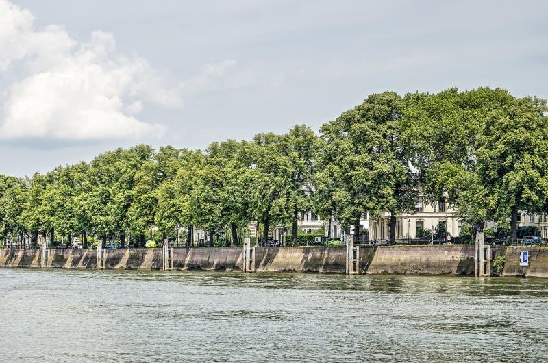 树和码头墙壁在代芬特尔江边 免版税图库摄影