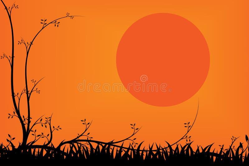 树和草日落背景的 免版税库存照片