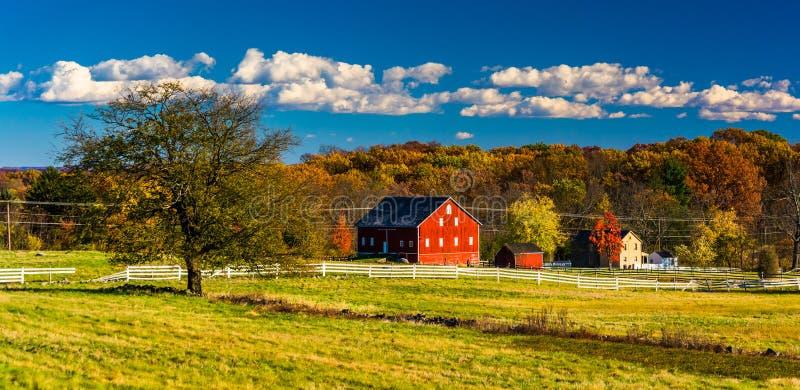 树和谷仓战场的在葛底斯堡,宾夕法尼亚 免版税库存图片
