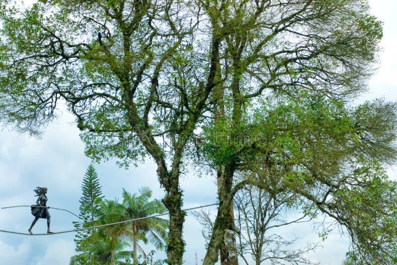 树和雕象在马尼萨莱斯,哥伦比亚 免版税库存图片