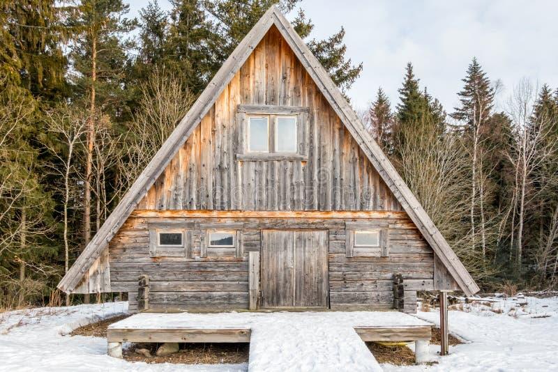 树和雪围拢的被风化的和年迈的原木小屋 库存照片