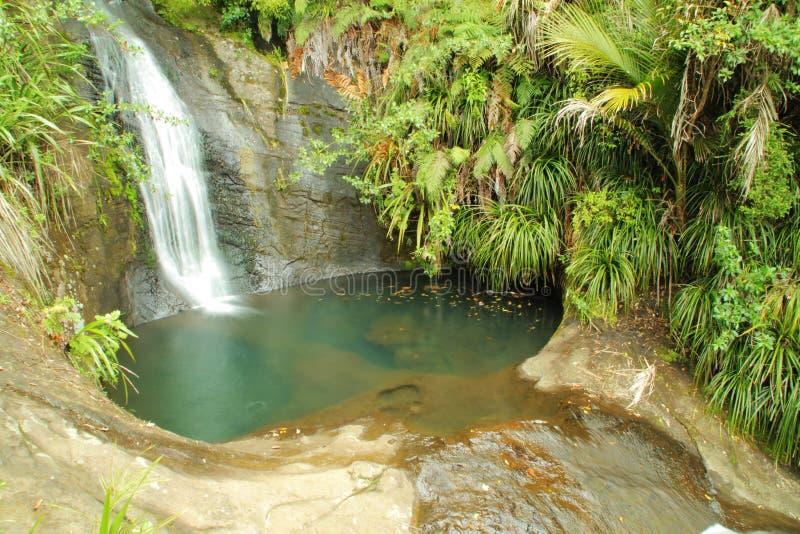 树和水池围拢的瀑布 库存图片