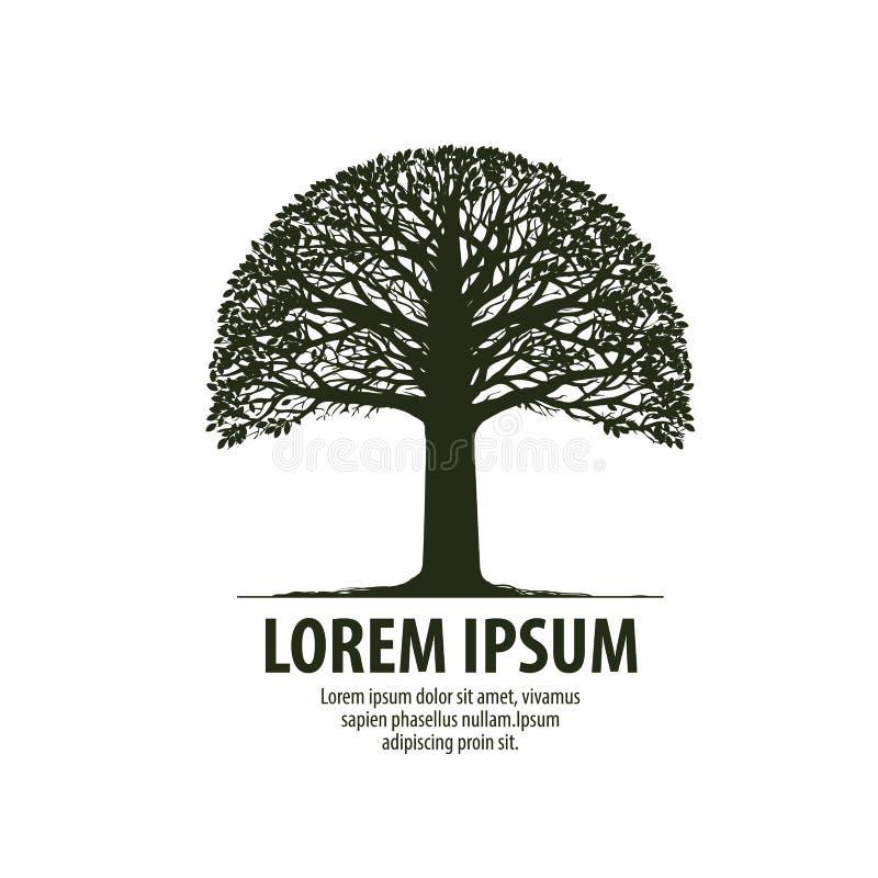 树商标 橡木象剪影  自然,生态标志 也corel凹道例证向量 向量例证
