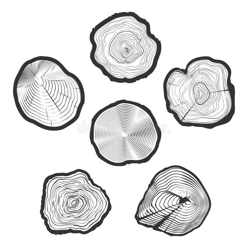 树圆环导航集合 向量例证