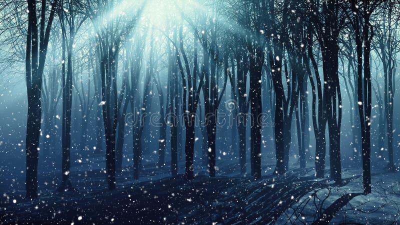树在一有雾的多雪的天 皇族释放例证