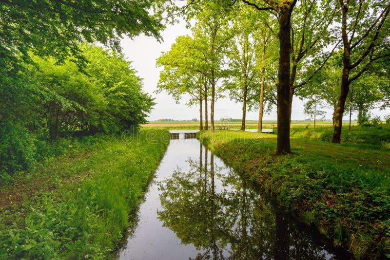 树在一条平直的小河的光滑的表面反射了 库存照片