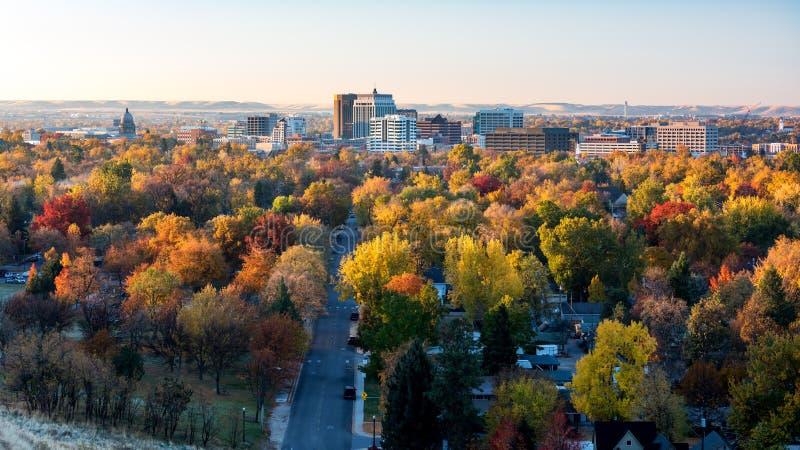 树在充分的秋天颜色的博伊西爱达荷地平线城市 免版税库存照片