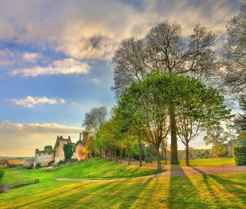 树在大别墅的de Bressuire公园 法国 图库摄影
