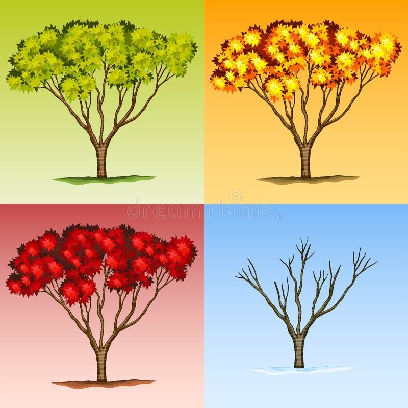 树场面用不同的季节 皇族释放例证