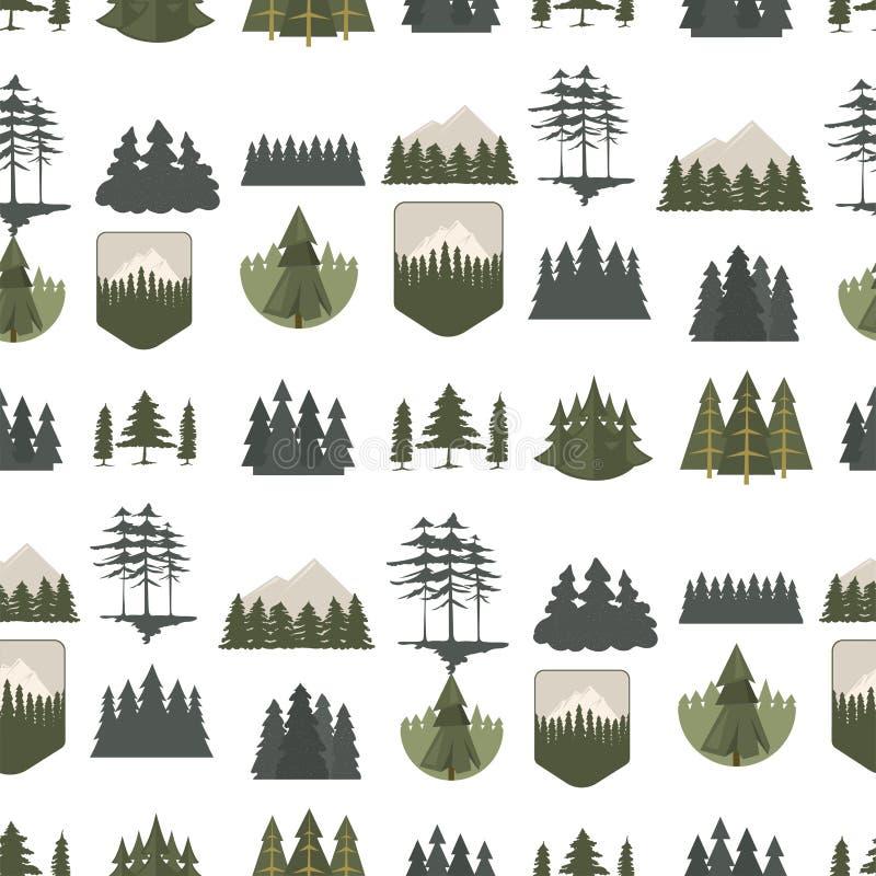 树室外旅行杉木现出轮廓具球果自然上面杉木云杉的分支雪松无缝的样式词根图画 向量例证