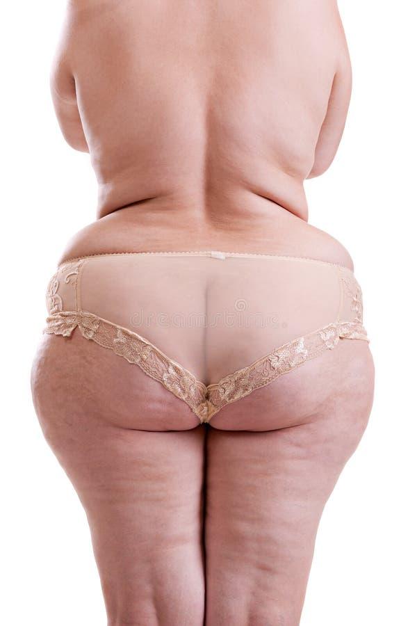 树干肥胖妇女 库存图片