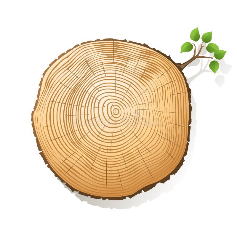 树干部分 向量例证