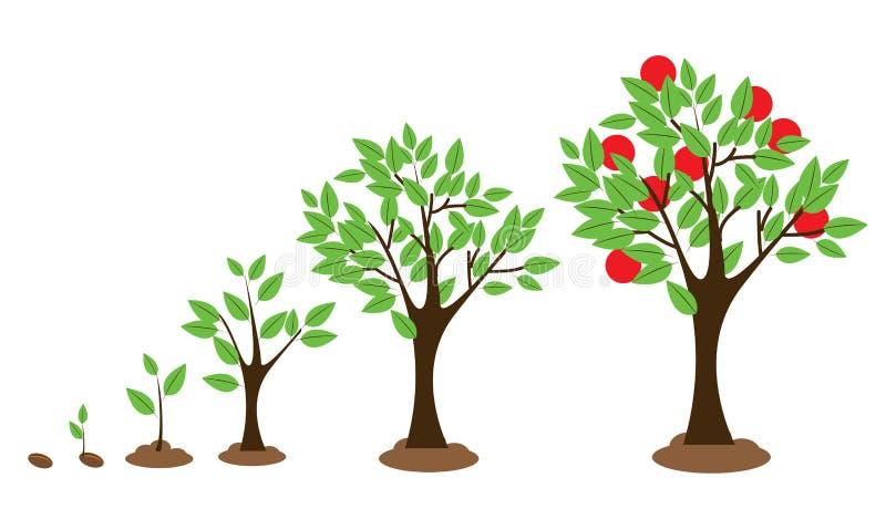 树成长 库存例证