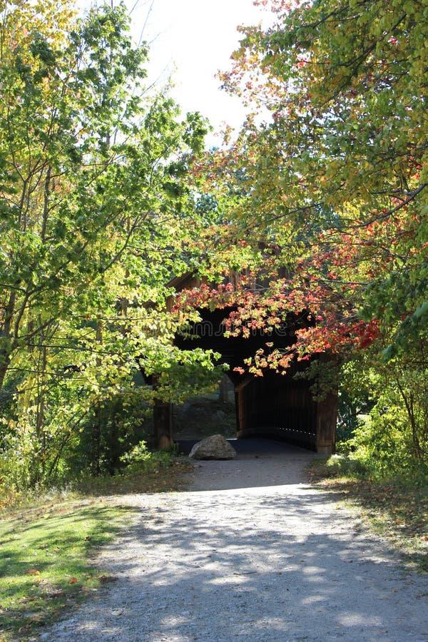 树掩藏的被遮盖的桥入口 图库摄影
