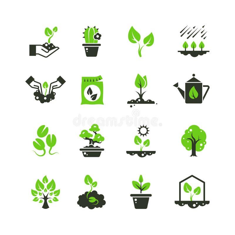 树新芽和植物传染媒介象 种植图表的幼木和手 皇族释放例证