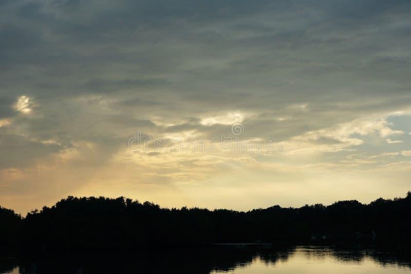 树日落剪影在湖岸的反对多云蓝天 库存照片