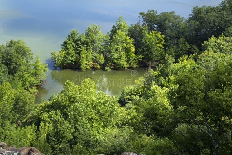 树木丛生的海岸线,从褴褛山,康涅狄格土坎的牡鹿池塘  免版税库存照片