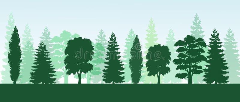 树杉木,冷杉,云杉,圣诞树 具球果森林,传染媒介剪影 库存例证