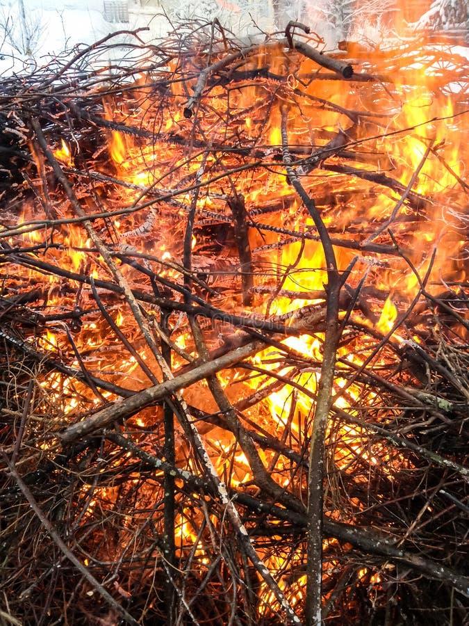 树枝在火烧在冬天 巨大的堆分支 免版税库存照片