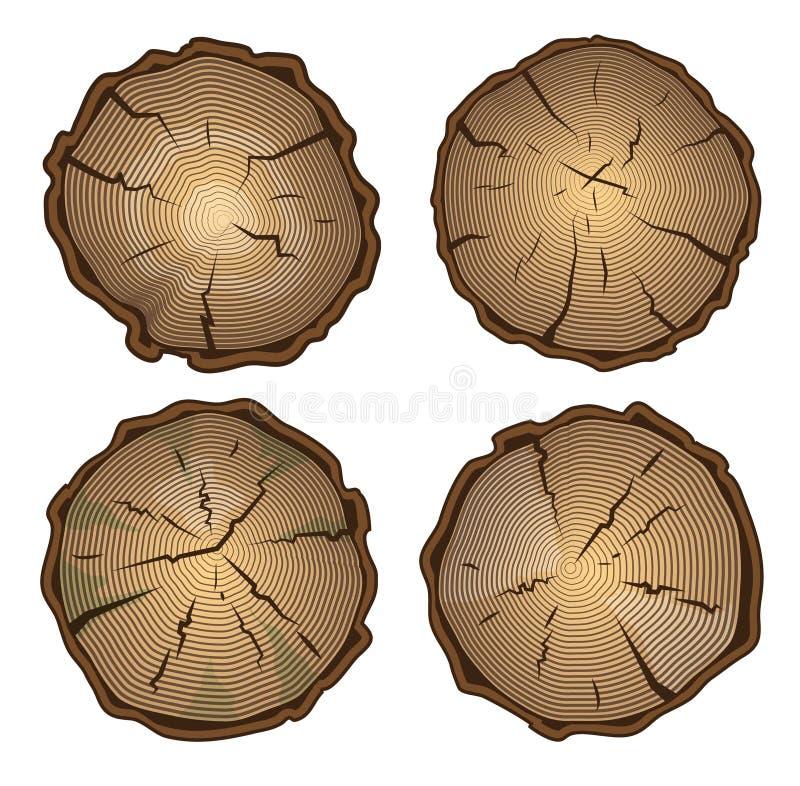 树桩,与年轮的圆的裁减 库存例证