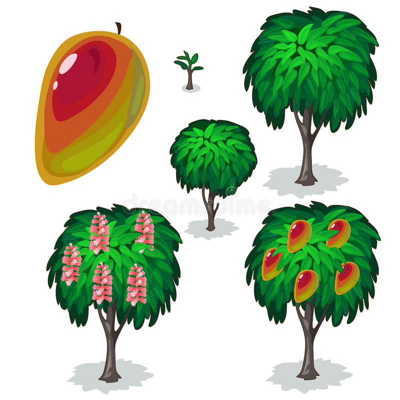树梨的种植和耕种 向量 向量例证