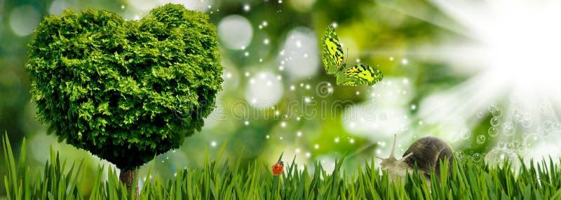 树的图象以心脏的形式作为爱的标志和热爱、树、蝴蝶和蜗牛在庭院特写镜头 皇族释放例证