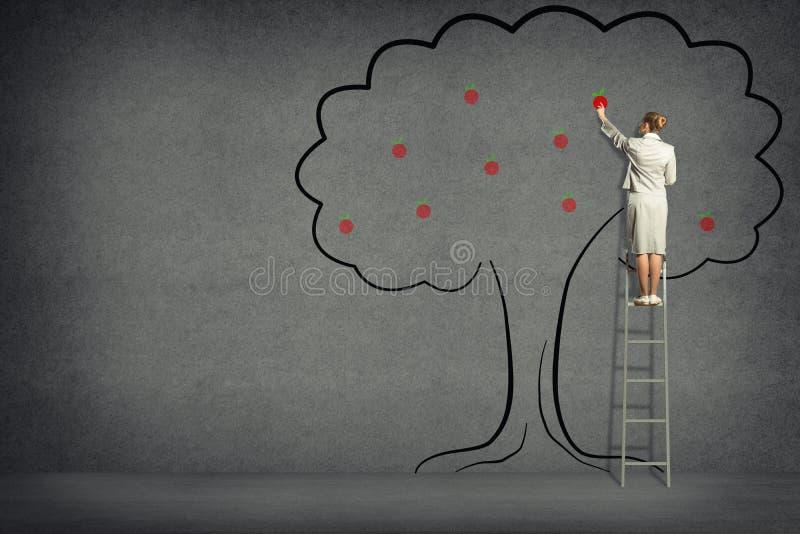 从树的女商人收获 免版税库存照片