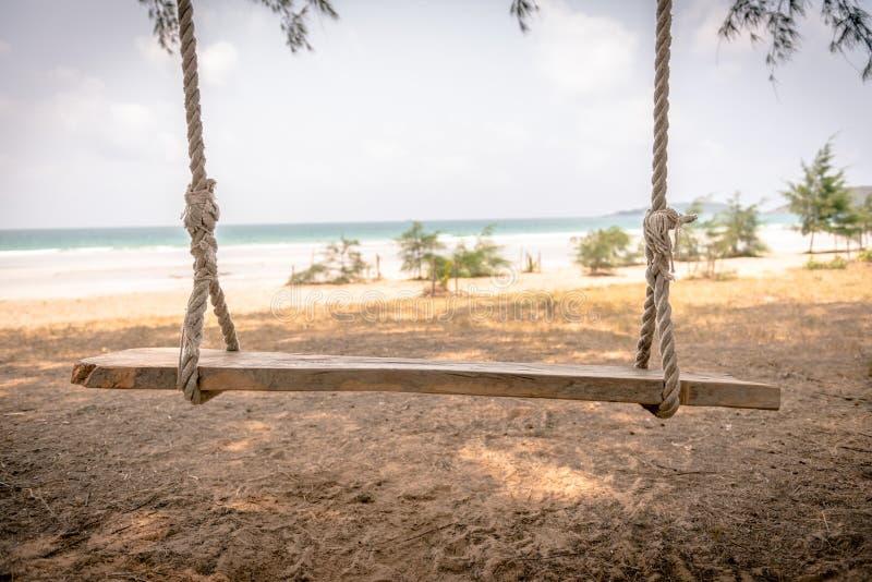 从树的摇摆吊在海滩 免版税库存照片