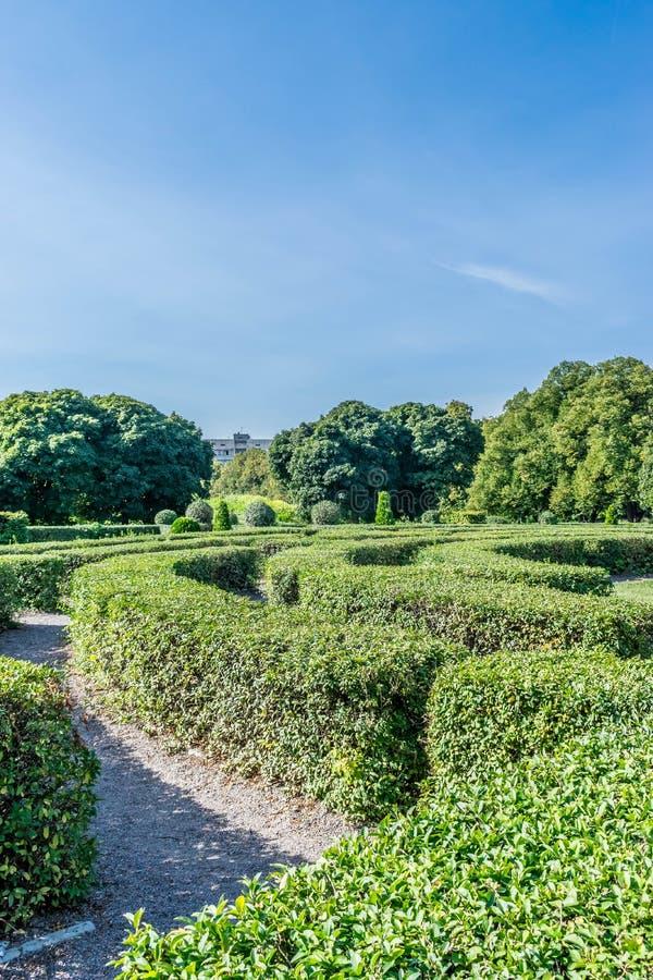 树篱迷宫在庭院里 免版税图库摄影