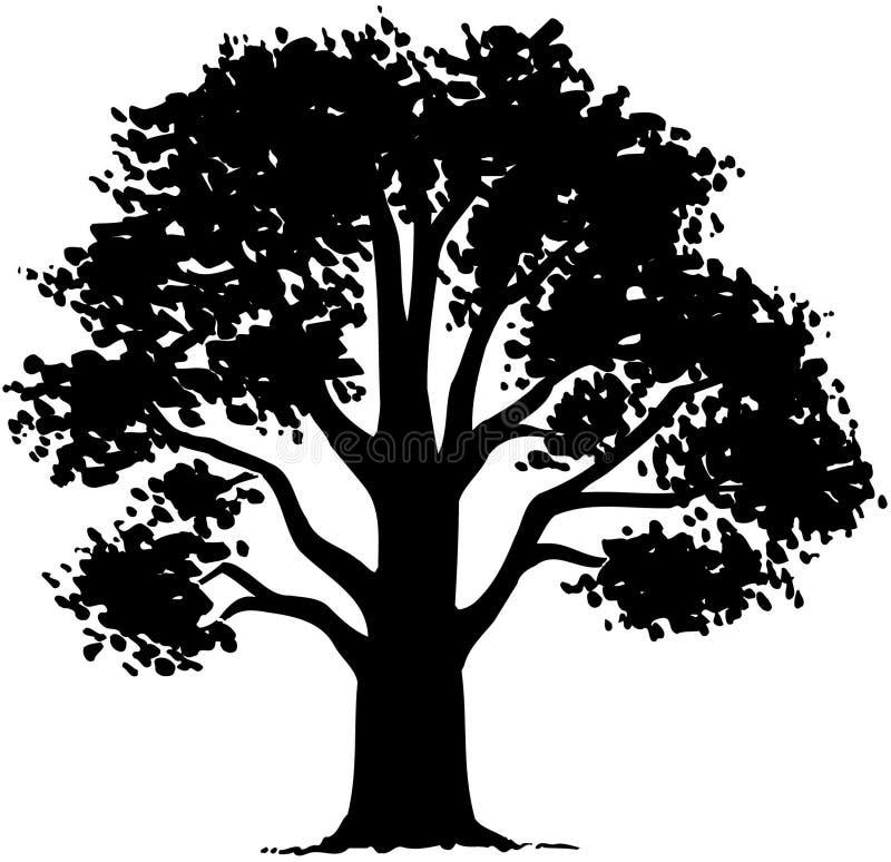 树自然叶子动画片传染媒介Clipart 向量例证