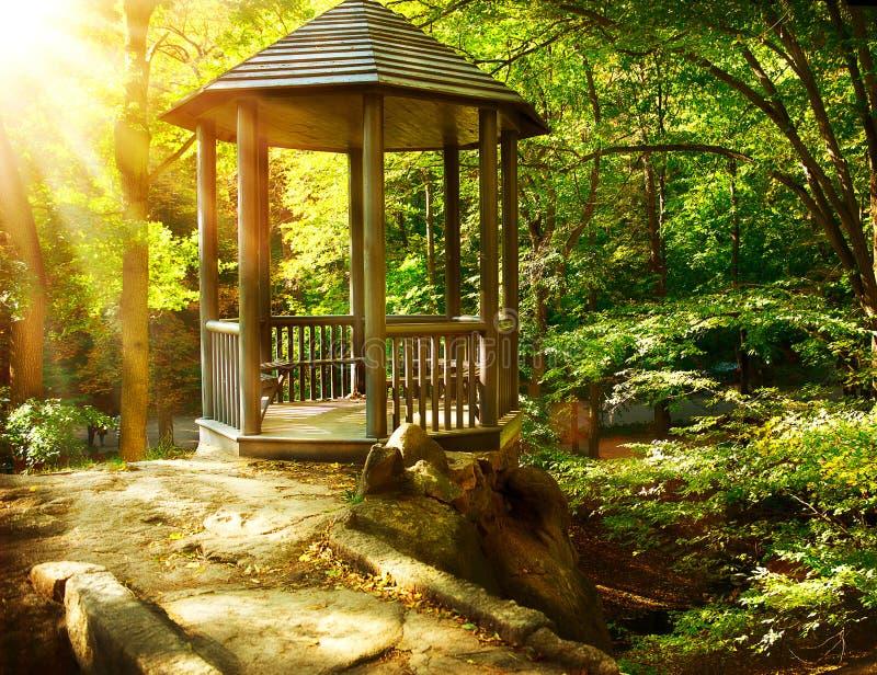 树荫处在秋季公园 库存照片