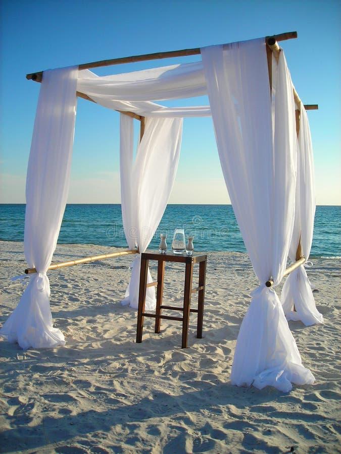 树荫处海滩婚礼 免版税库存照片